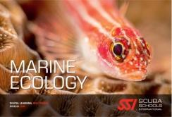 Locandina Marine Ecology