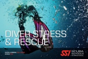 Locandina Stress