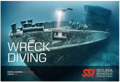 Locandina Wreck